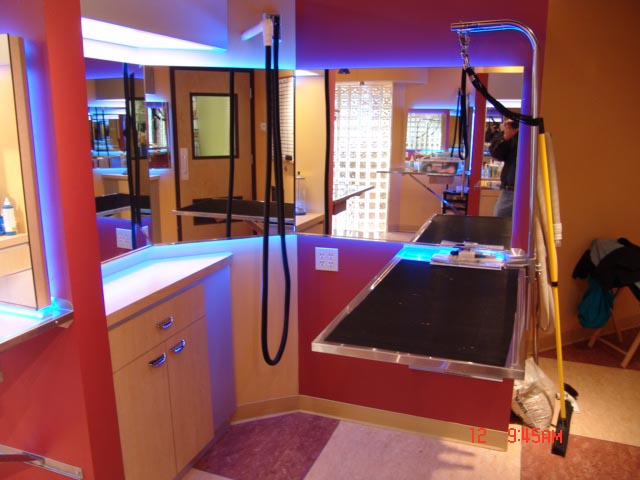 Pet Salon, Pet Salon grooming area, Pet Salon station
