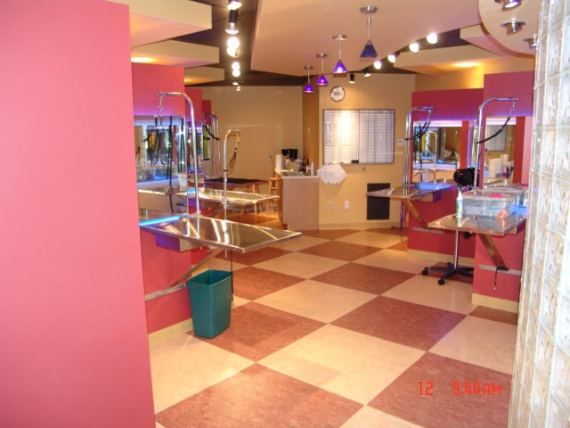 Pet Salon 2