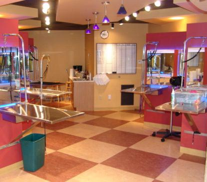 Pet Salon Store Fixtures